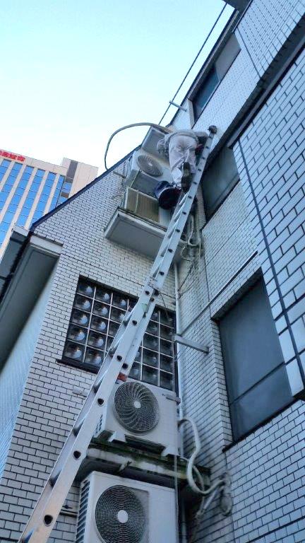 梯子を使った撤去作業の様子